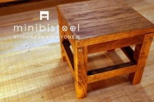 img_workshop0004-300x199